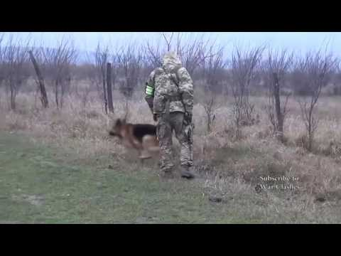 Special Operations In The North Caucasus