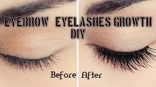 Eyelashes and Eyebrows Growth DIY| Best Eyebrow Growth Serum | Beau-tips Treasure