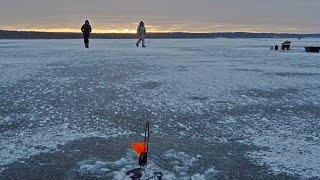 Жерлицы Мормышка Зимняя рыбалка подводные съемки