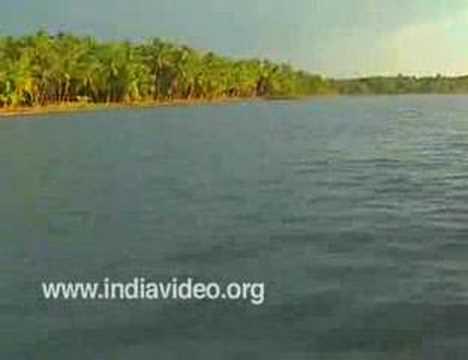 Serene backwaters of Valiyaparamba