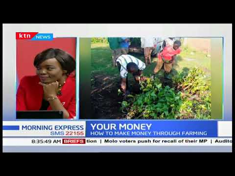 Your Money: How you can make money from Agriculture through greenhouse farming