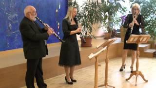 """Musikschule Wertingen: """"Sagt holde Frauen"""" - W. A. Mozart"""