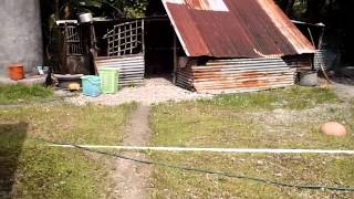 Repeat youtube video My house on Satowan in Chuuk, Micronesia