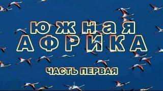 ЮЖНАЯ  АФРИКА  фильм первый