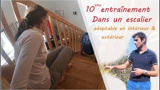 Entraînement n°10 seul ou en famille, dans un escalier : adaptable intérieur et extérieur COVID-19