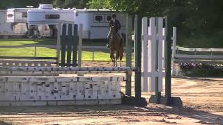 Baltimore - equitation/hunter prospect for sale