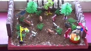 Science Exhibition By PP IIB students || St Pious X School ||