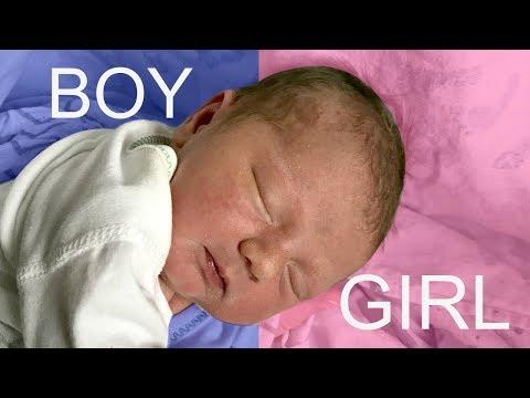 NEW BABY GENDER REVEAL!!! BOY OR GIRL?
