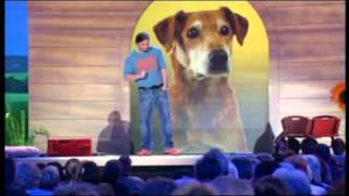 Martin Rütter: Hund-Deutsch/Deutsch-Hund