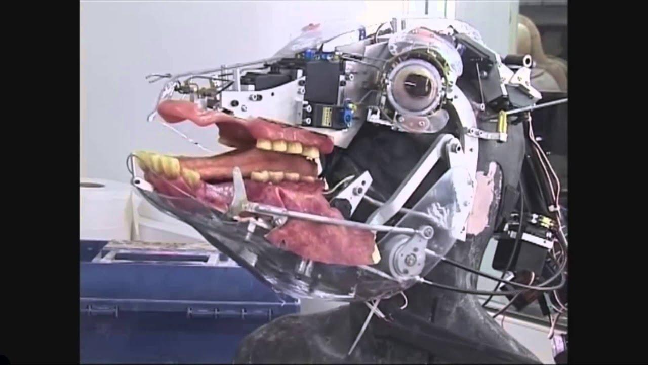 Spooky Scary Animatronics & Endoskeletons - YouTube