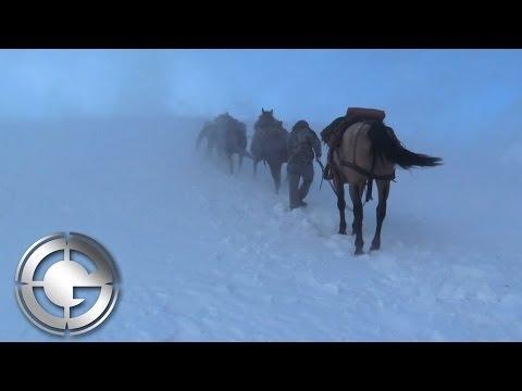 High Country Wyoming Elk Hunt
