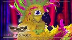 She's A Lady - Tom Jones | Kakadu Performance | The Masked Singer | ProSieben
