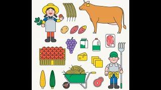 세계식량가격 계속 상승…옥수수·밀·설탕 등 많이 올라