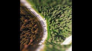 Ilgaz Dağı Drone Çekimi - #meraklıkuş #turkey #travel