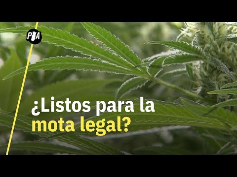 ¿México, listo para legalización de marihuana?