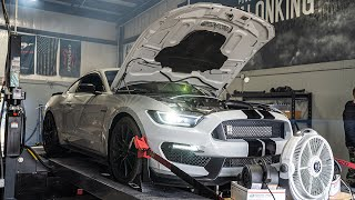 My Twin Turbo GT350 Set a New Dyno Record on LOW BOOST!