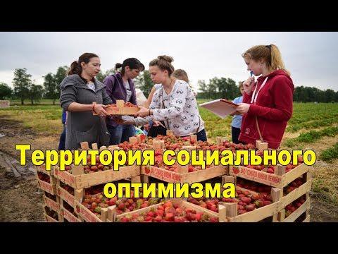 "Территория социального оптимизма ""Совхоз имени Ленина"""