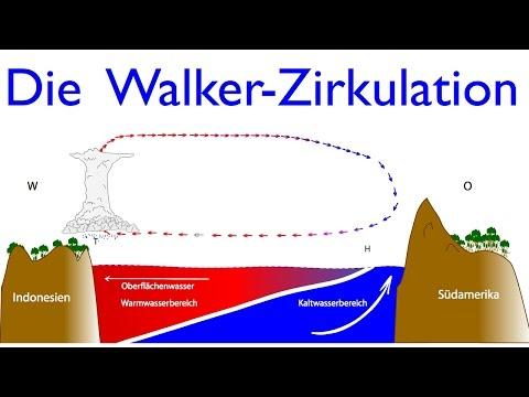 Klassiker aus dem Erdkundeunterricht: Die Walker-Zirkulation