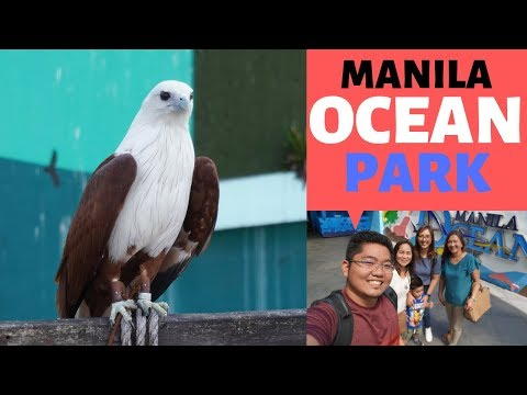 MANILA OCEAN PARK 2019