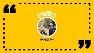천리포수목원 11월 영상 / 오리농장 추수
