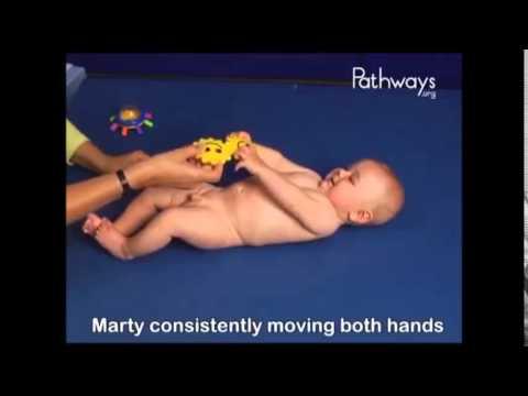 Early Childhood Development (1 - 6 months)