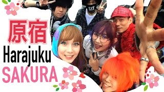 TOKYO Harajuku Fashion SAKURA HANAMI 「原宿ファッションウォーク花見」 with friends from Singapore