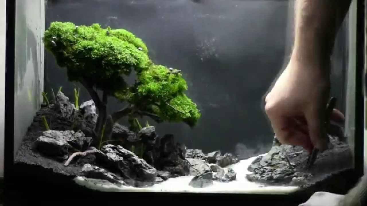 Aquarium Decoratie Zelf Maken