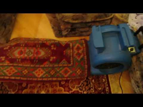 Хитрость при сушке ковров на дому. Ковровый фен. Как быстрее высушить 2 ковра.