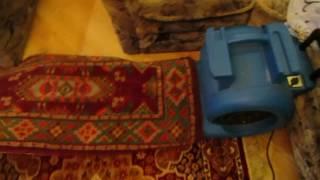 видео Фены для сушки ковров