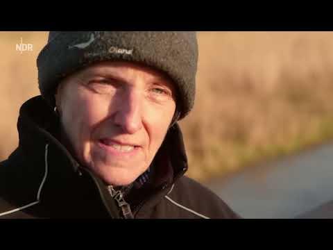Winter an der Westküste | die nordstory | NDR
