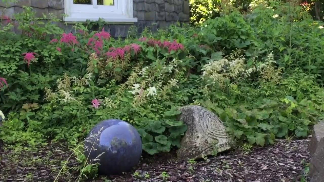 Naturnaher Garten Im Sommer Youtube