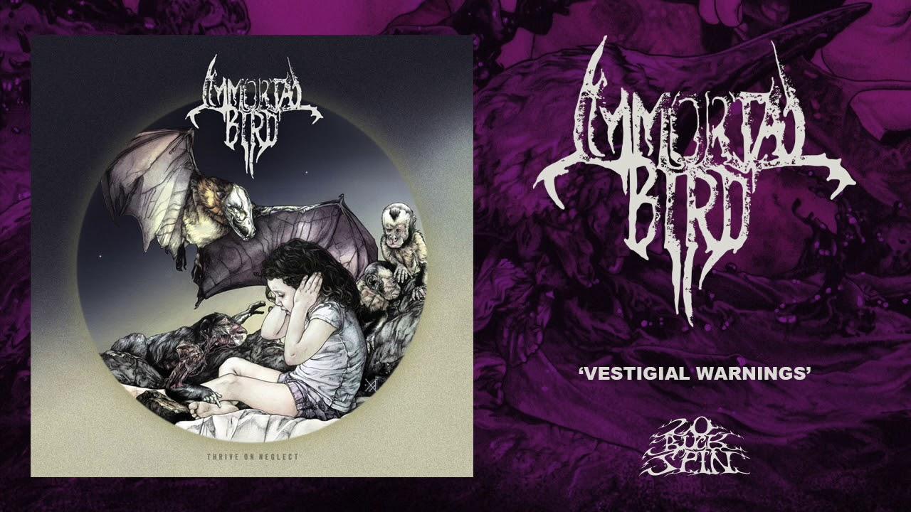 IMMORTAL BIRD - Vestigial Warnings (From 'Thrive On Neglect' LP, 2019)