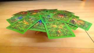 Regeln für Boabab - Spielanleitung