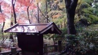 奈良市竹林寺の行基墓所へ参拝 紅葉の美しいお寺でした.