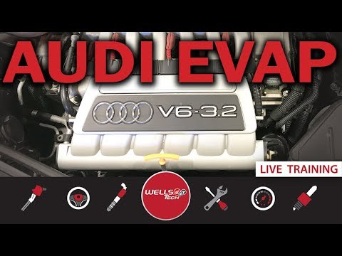 How To Diagnose And Fix An EVAP Leak On An Audi TT / VW  System – P0446, p0455, p0456