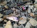 Rockfishing (Чёрное море)