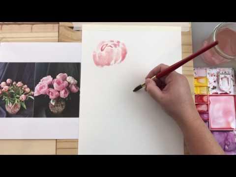 Watercolor basic peonies