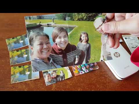 HP Sprocket Zink Paper Comparison - Polaroid/HP/LG Zink Photo Paper