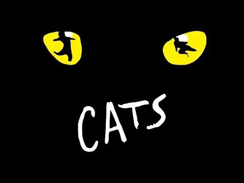 GERARDO QUIROZ PRESENTA EL CASTING DE CATS EN MÉXICO PROTAGONIZADO POR LA CANTANTE YURI