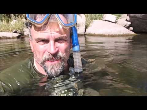 River Treasure! Salt River Arizona | Aquachigger