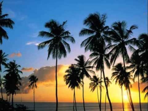 Coconut Grove (Karaoke) /  Ace Tek