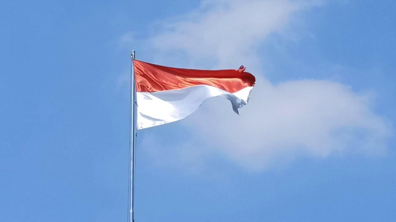 Bendera Merah Putih Berkibar Full Hd Youtube