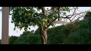 A Thousand Words - Trailer