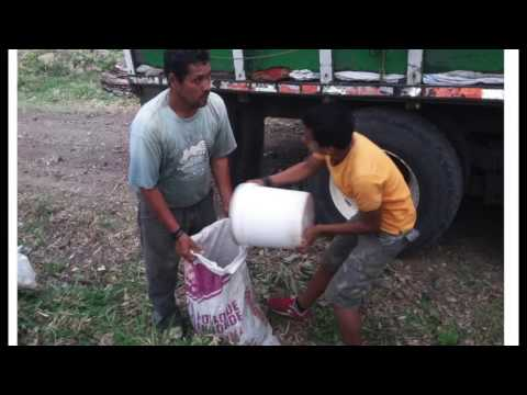 Composting latrines Whats App initial info 1 sec per