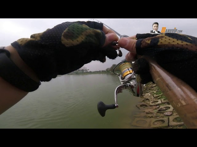 CỤC PHÊ - Tổng hợp các pha lên cá bằng cần siêu mềm và tôm mềm