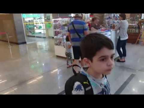 Поездка Майкоп-Адлер на Ласточке