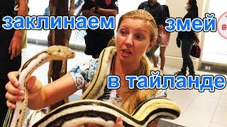 Таиланд Паттайя заклинаем змей в Терминале 21