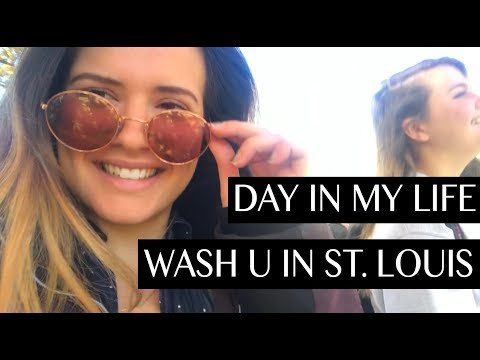 day in my life: washington university in st. louis