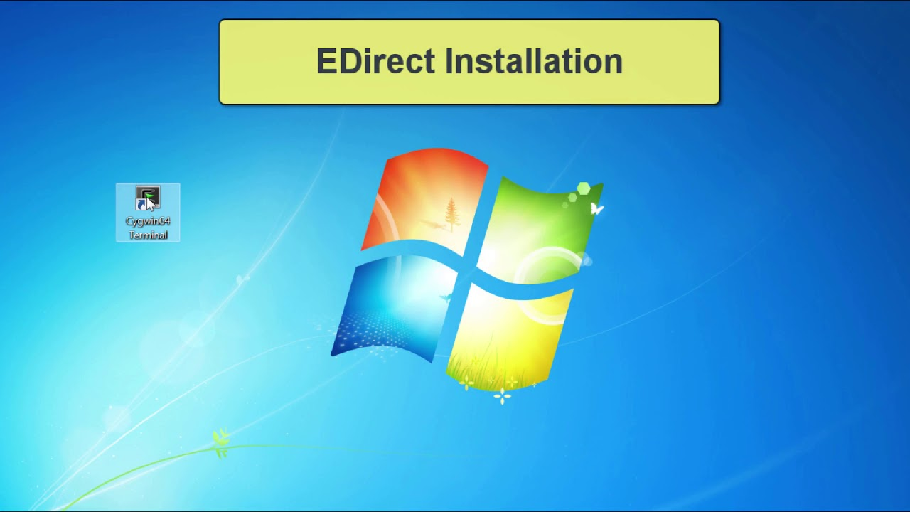 How to Install Cygwin on Windows and How to Install EDirect