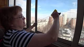 видео Заказываем мытье окон